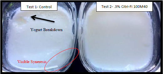 yoghurt without and with CF